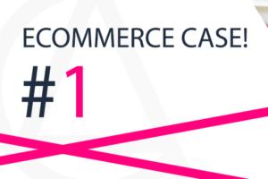ecommerce-case
