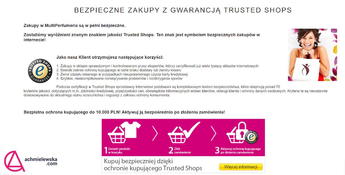 bezpieczeństwo transakcji w ecommerce